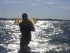Kiteschule Kiel, kiten, kite, kitesurfen, kiteboarden, kiteboarding, kiel, kiteschule, kiteschulung, lernen, Kiel, laboe, Aukrog, kiteunterricht, schule, surfschule, kiteschule