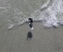 kitesurfen-kapstadt-kiteschule-kiel-kitelessons-2.jpg